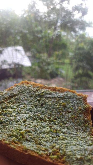 moringa-pesto-on-bread