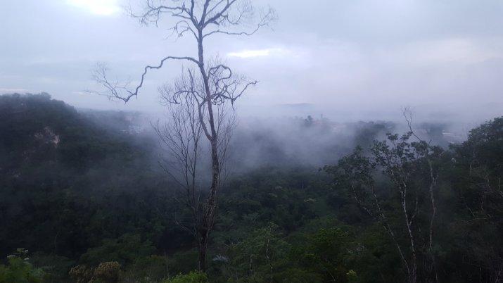11.9 AM fog.jpg