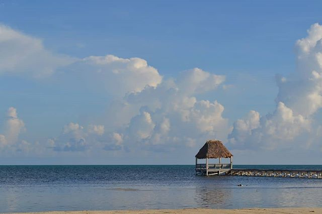 Listening to @besphrenz missing the #BeachHouse in San Pedro!  Here's a view from the beach of #AmbergrisCaye I snapped in July.  #WeAreGrassfed #GrassfedBelize #AmbergrisCaye #Belize #Travel #Beach #Palapa #Pier #Beachfront #SanPedroBelize #TravelBelize #Grassfed #Travelgram #Beaches #Besphrenz #AsherRoth #Music