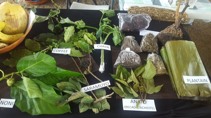 World Food Day 2016 Belmopan, Belize